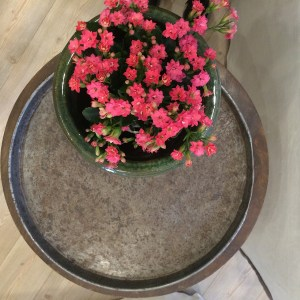 garden-pot-metal-tray-gifts-homewares-decoration-home-garden-leforge-furniture-camperdown5